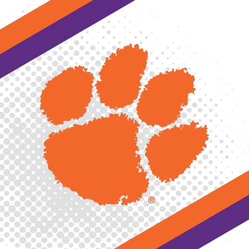 Clemson University College Teams Logo Series Product