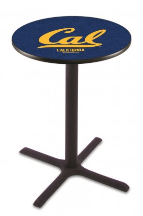 University of California Berkeley 211 Pub Table